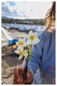 Die Patrone steht für den Krieg der uns hierher brachte die Blume dafür dass der Krieg uns nicht die Hoffnung verlieren ließ. © Qutaeba